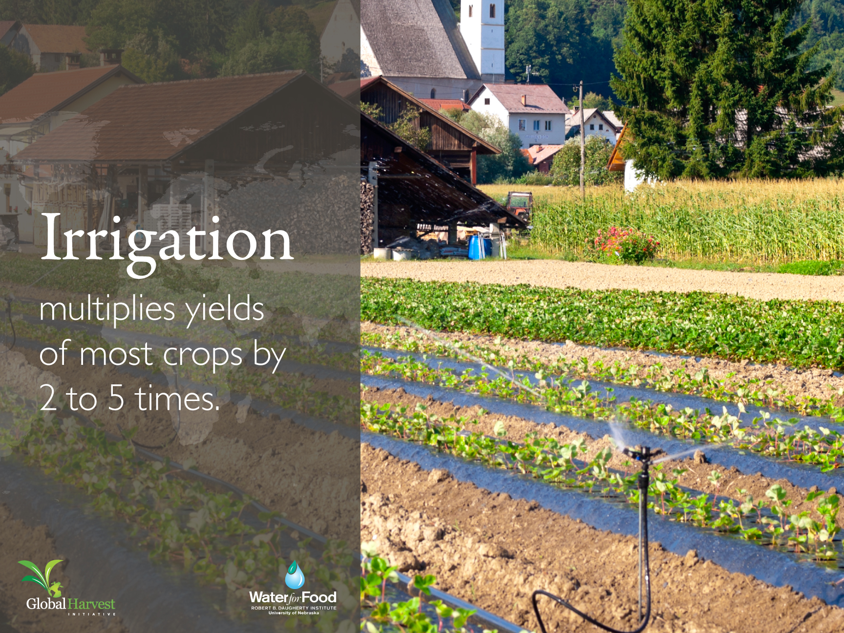 <p>Irrigation</p>