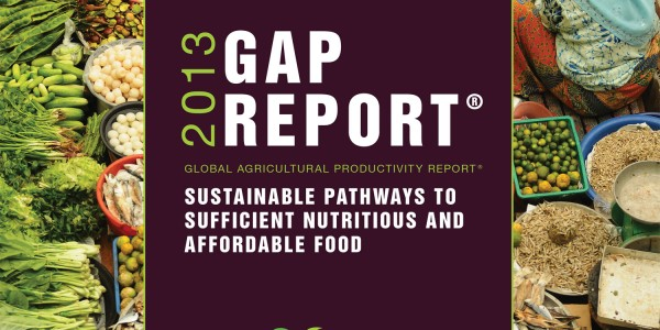 2013 Ag Report Cover Design